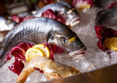 Pulcinella Authentic Italian Restaurant Freshest Seafood